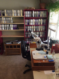 Aphid lab and collection.
