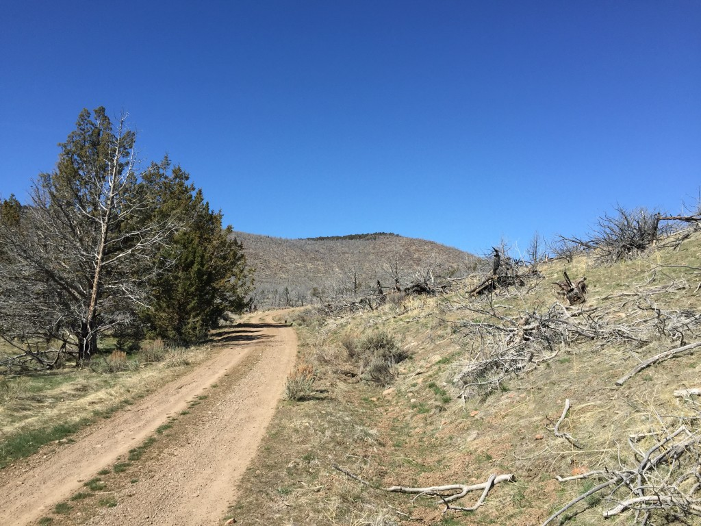 The road that goes past Juniper Mountain, through a landscape that is shaped by drought and fire.